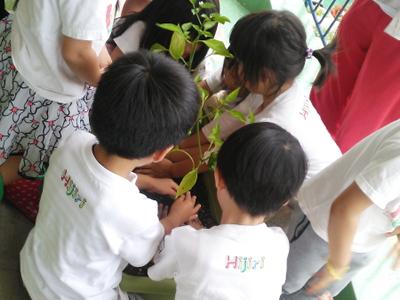 小さなお子さん達に土にさわってもらい、植物の成長を楽しんでもらえたら…